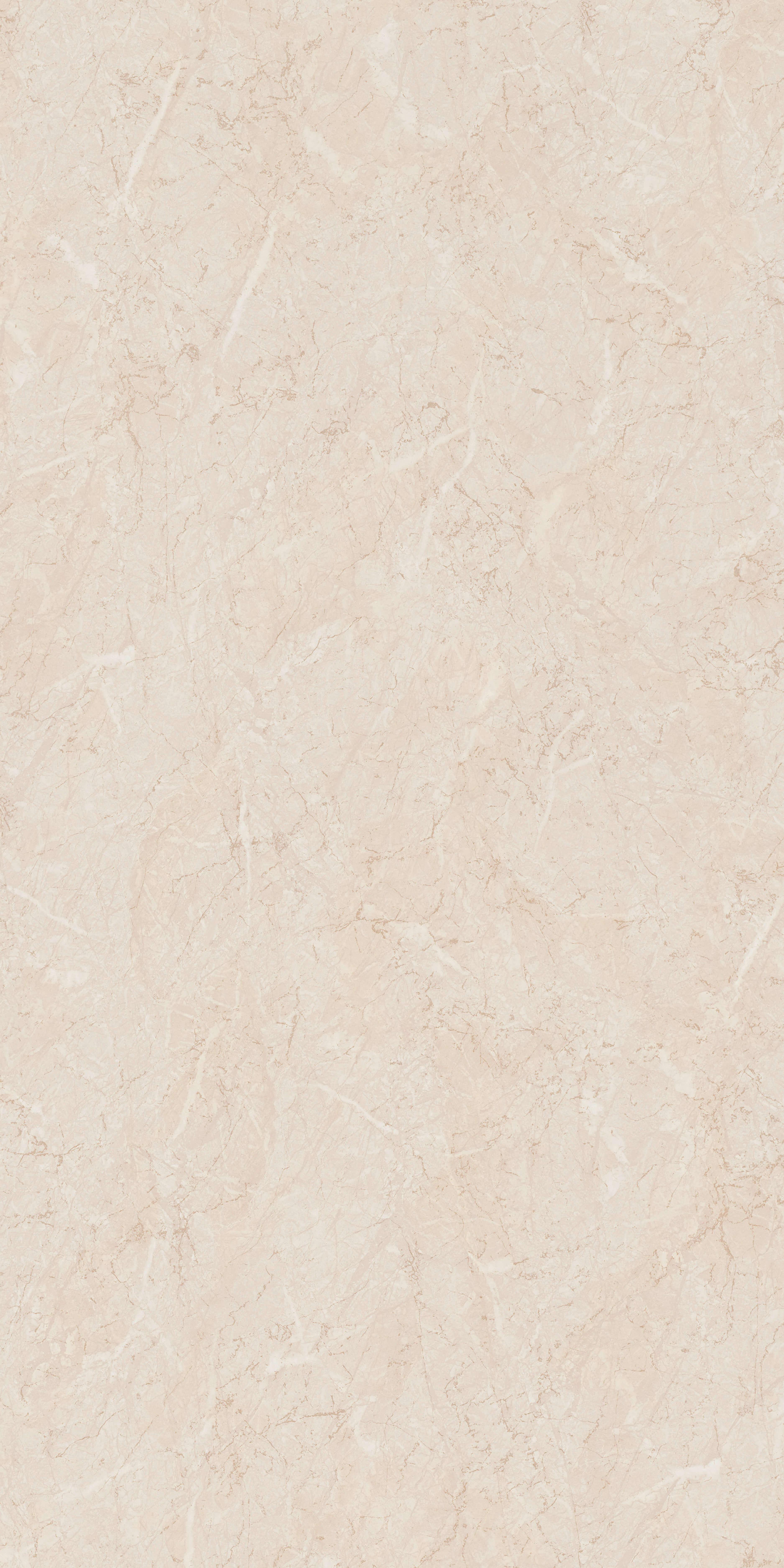 Marmur Jasny S63003 TC