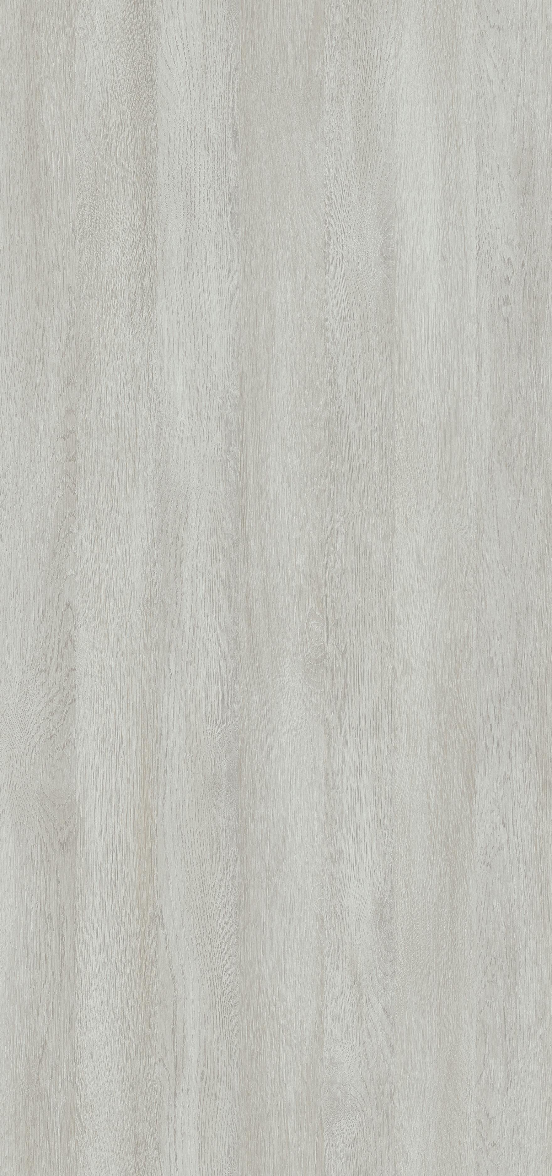 Dąb Wilton Biały R20284 SD