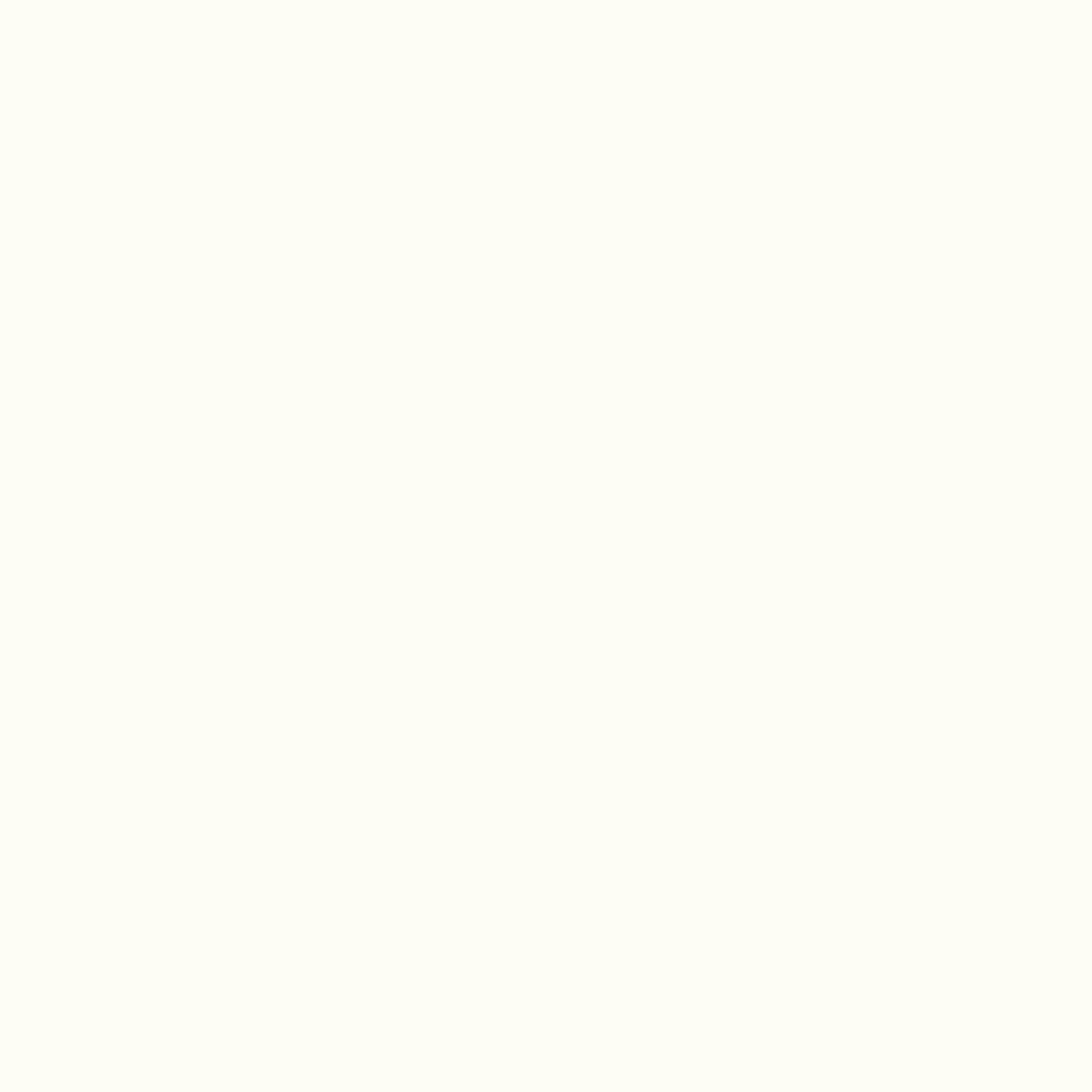 Biel Kryjąca W10410 MP
