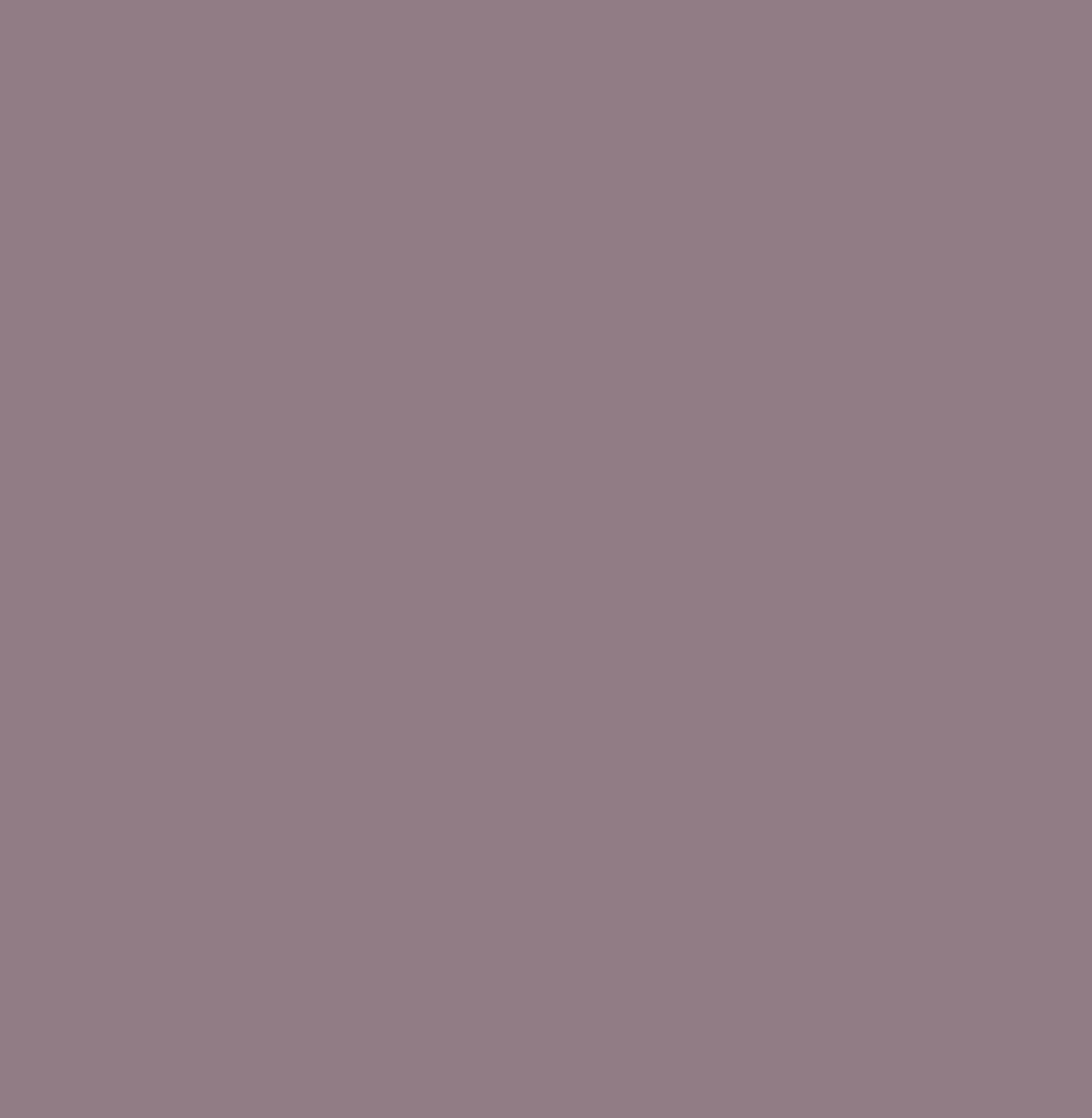 Śliwka U17505 SD