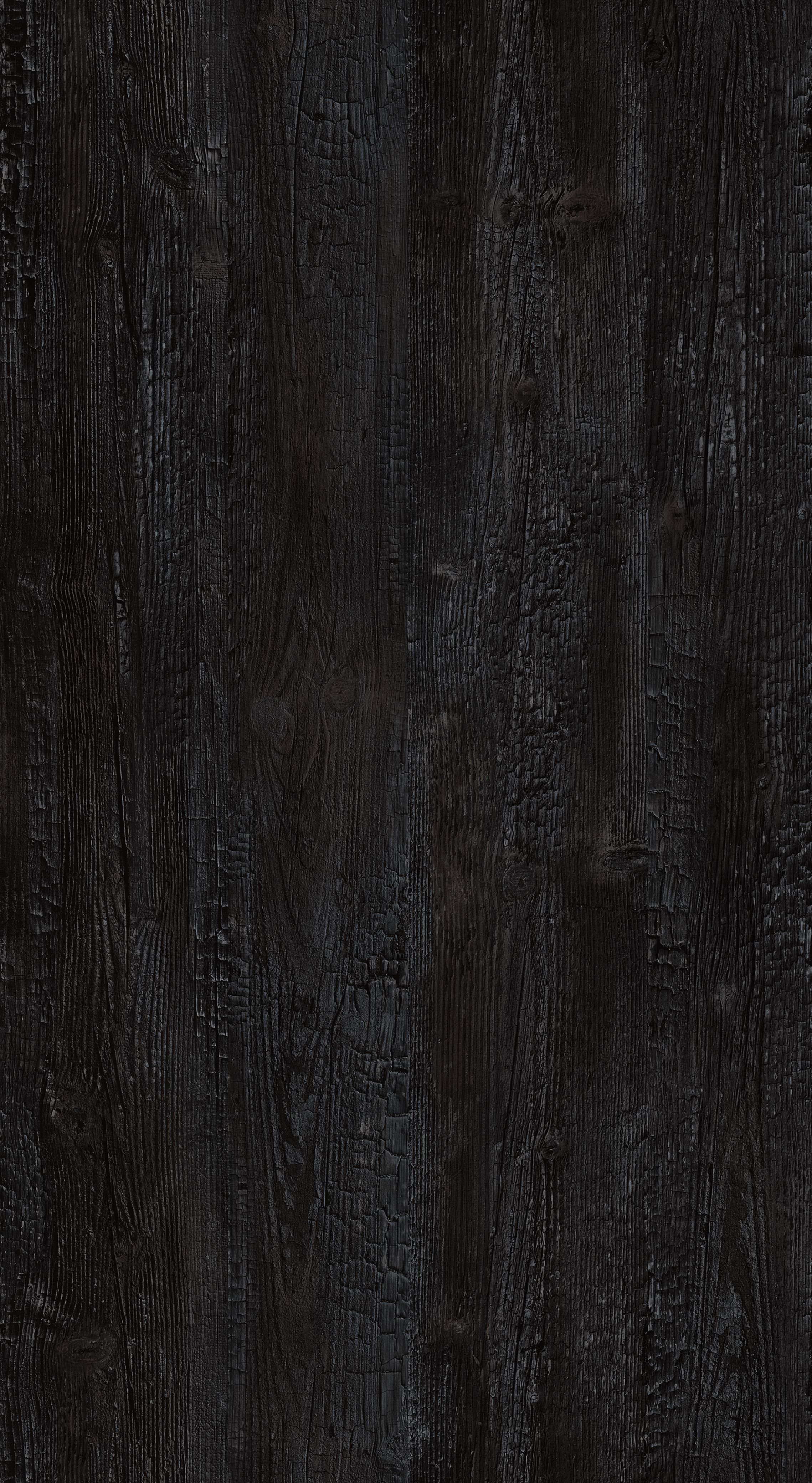 Sugi ban R48050 SD
